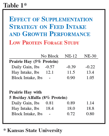 Cattle protein supplement strategy on feed intake.