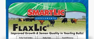 FlaxLic® Improved Growth & Semen Quality in Yearling Bulls!