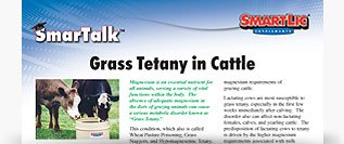 Grass Tetany in Cattle SmarTalk™