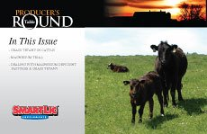 The Producer's Roundtable Newsletter - Volume 1